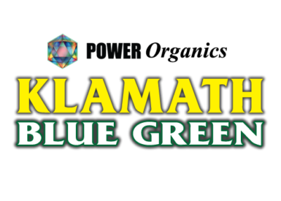 klamath blue green algae